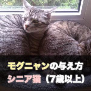 【保存版】7歳以上のシニア猫に対するモグニャンの与え方、給餌量、注意点
